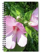 Pink Marsh Mallow Wildflower Spiral Notebook