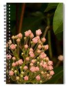 Pink Mountain Laurel Buds Spiral Notebook