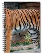 Pink Nosed Tiger Spiral Notebook