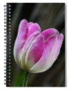 Pink On Display Spiral Notebook