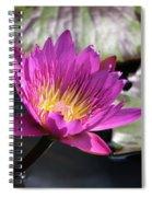 Pink On Water Spiral Notebook
