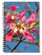 Pink Orchid Tree Spiral Notebook
