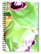 Pink Orchid With Green 1 Spiral Notebook