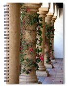 Pink Peacock Colored Bougainvillea Blossoms Climbing Pillars Photograph By Colleen Spiral Notebook