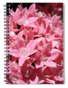 Pink Pentas Beauties Spiral Notebook