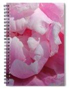 Pink Peony Spiral Notebook