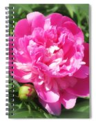 Pink Peony On Green Spiral Notebook