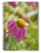 Pink Persuasion Spiral Notebook