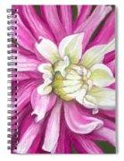 Pink Petal Blast Spiral Notebook