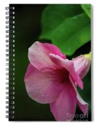 Pink Petals In The Rain Spiral Notebook