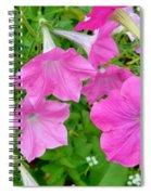 Pink Petunia Flower 11 Spiral Notebook
