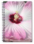 Pink Platter Spiral Notebook