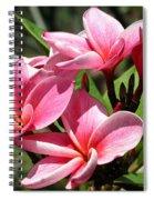 Pink Plumeria Spiral Notebook