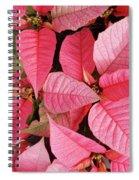 Pink Poinsettias Spiral Notebook