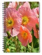 Pink Poppies 2 Spiral Notebook