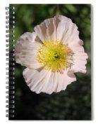Pink Poppy Spiral Notebook