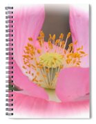 Pink Poppy Serenity Spiral Notebook