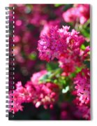 Pink Profusion 1 Spiral Notebook