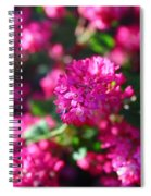 Pink Profusion 2 Spiral Notebook