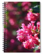 Pink Profusion 3 Spiral Notebook