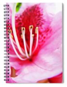 Pink Rhodie Flowers Art Prints Canvas Rhododendrons Baslee Troutman Spiral Notebook