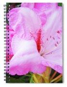 Pink Rhododendron Art Print Floral Canvas Rhodies Baslee Troutman Spiral Notebook