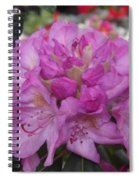 Soft Purple Rhododendron  Spiral Notebook
