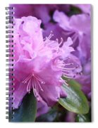 Light Purple Rhododendron With Leaves Spiral Notebook