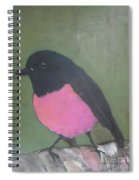 Pink Robin Spiral Notebook
