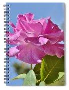 Pink Rose Against Blue Sky I Spiral Notebook