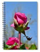 Pink Rose Against Blue Sky Iv Spiral Notebook
