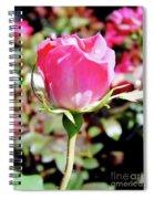 Pink - Rose Bud - Beauty Spiral Notebook