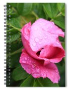 Pink Rose Bud Spiral Notebook