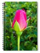 Pink Rose Bud Spiral Notebook