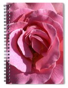 Pink Rose Spiral Notebook