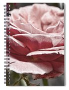 Pink Rose Faded Spiral Notebook