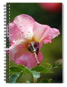 Pink Rose In The Rain 2 Spiral Notebook