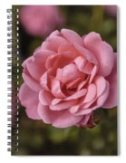 Pink Rose Instagram Spiral Notebook