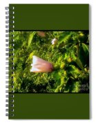 Pink Rose Of Sharon Against Trees Spiral Notebook