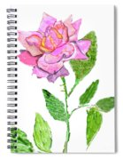 Pink Rose, Painting Spiral Notebook