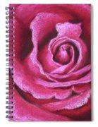 Pink Rose Pastel Painting Spiral Notebook