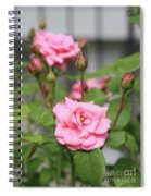 Pink Rose With Buds Spiral Notebook