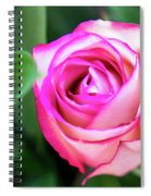 Pink Rose With Leaves Spiral Notebook