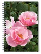 Pink Roses 1 Spiral Notebook