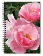 Pink Roses 2 Spiral Notebook