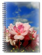 Pink Roses Against The Beautiful Arizona Sky Spiral Notebook