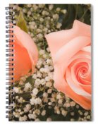 Pink Roses Fine Art Photography Print Spiral Notebook