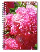 Pink Roses Summer Rose Garden Roses Giclee Art Prints Baslee Troutman Spiral Notebook