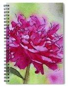 Pink Ruffles Spiral Notebook