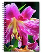Pink Rules - Impasto Spiral Notebook